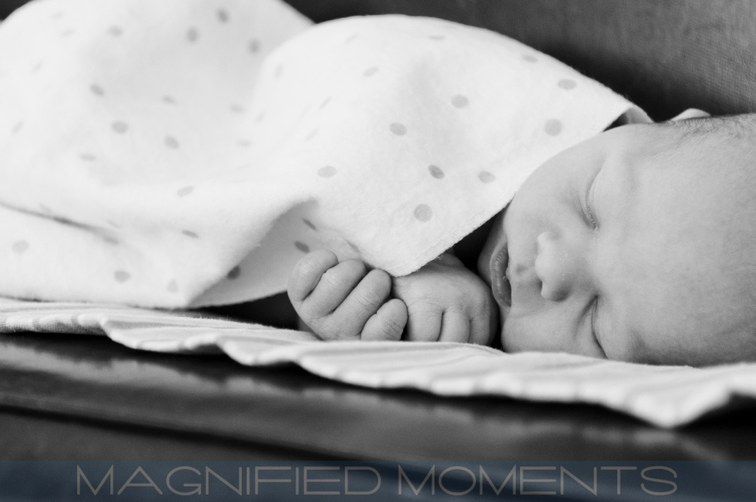 Kansas City Portrait Photographer, Newborn, Senior, High School Senior, Magnified Moments, Fine Art, Modern, Fun, Photography, Prairie Village, Overland Park, Doring Photography, Baby, Family, Pet, Love, Awesome