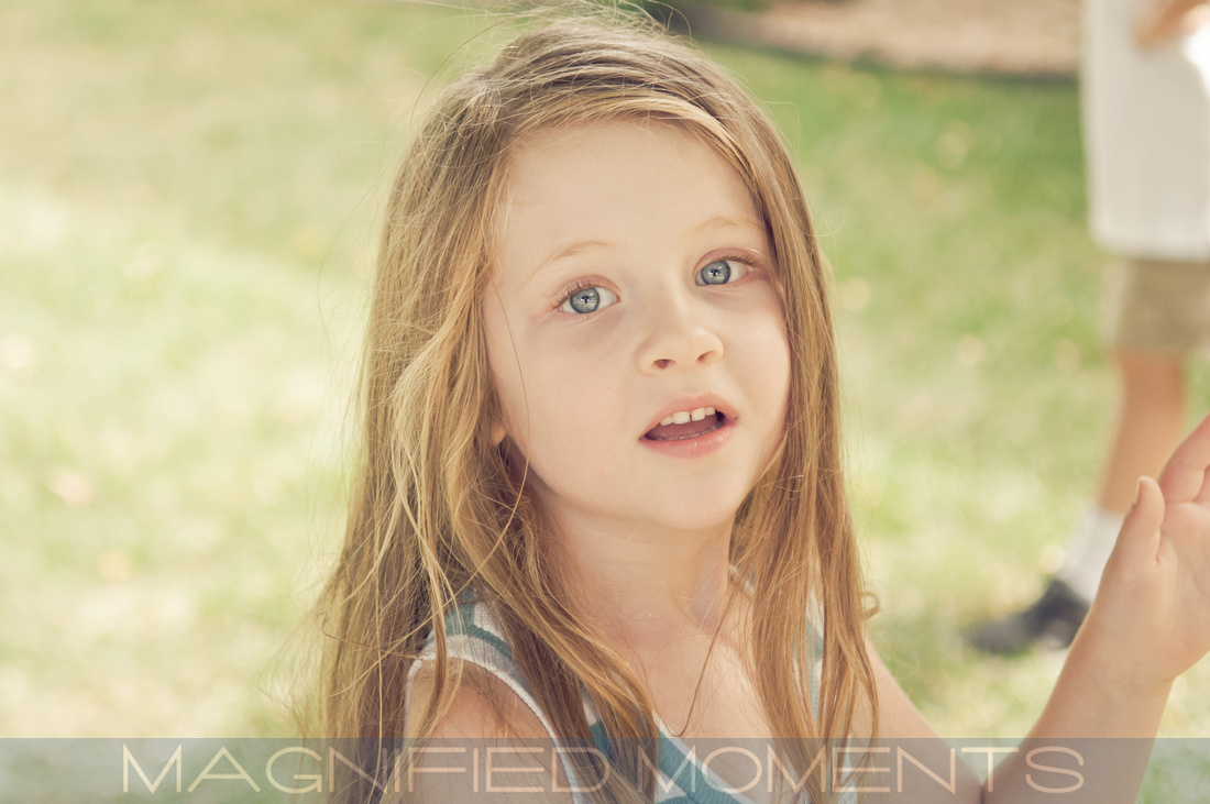 Kansas City Portrait Photographer, Magnified Moments, Senior Pics, Family Pics, Large Group Portraits, KC, Prairie Village, Overland Park, Olathe
